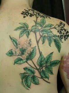 Pin by Christina Zempel on Feathers | Tattoos, Botanical