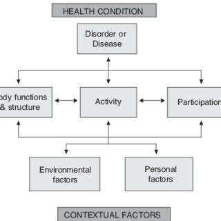 (PDF) The International Classification of Functioning