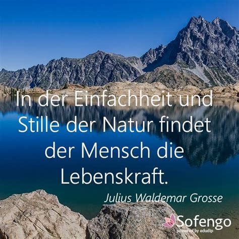 424 best images about Sofengo Zitate on Pinterest